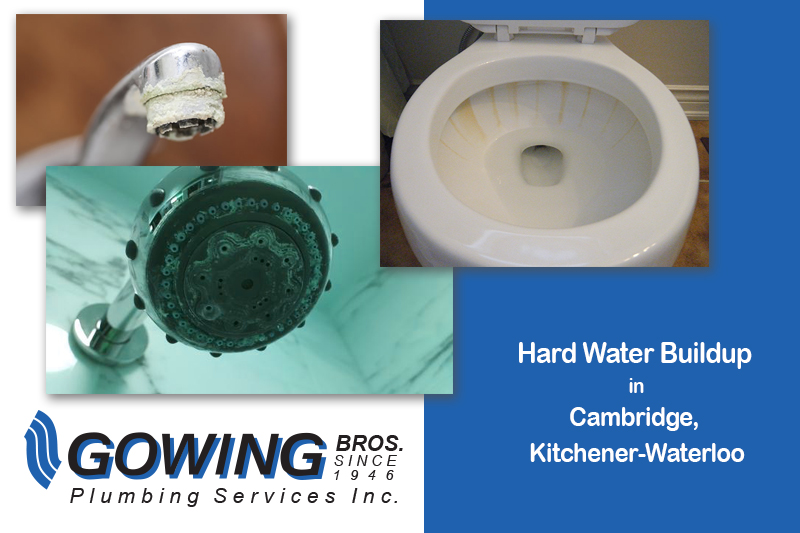 Hard Water in Cambridge